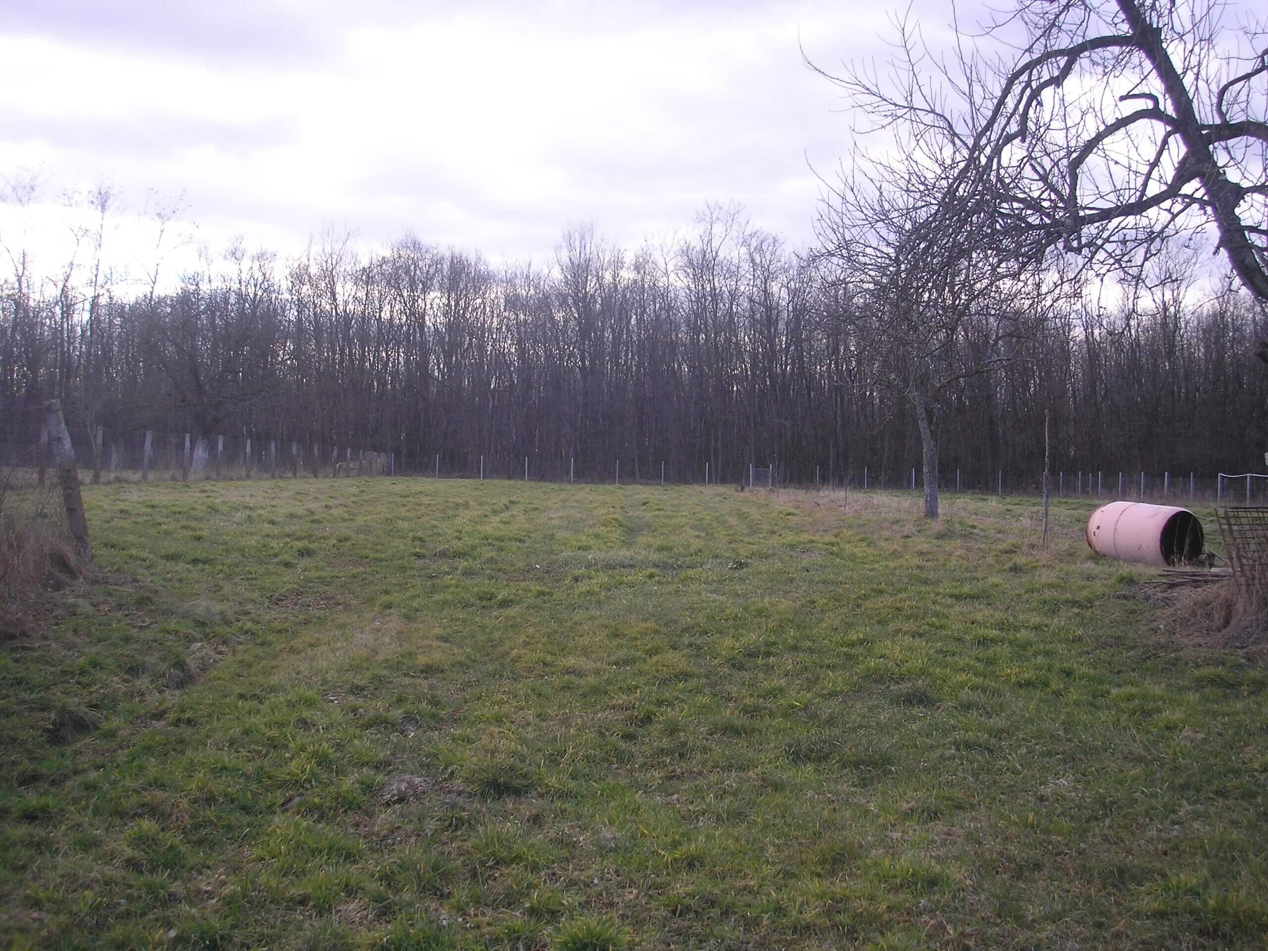 Loc de casa cu gradina la 15 Km de Baia Mare, pret deosebit !